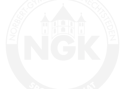Sportinternat Knechtsteden – Dormagen (Logo)